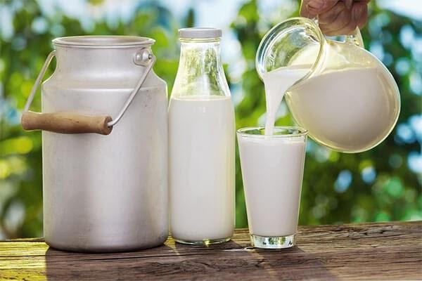 Top 5 sản phẩm sữa bột nguyên kem tốt nhất thị trường hiện nay